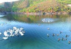 Вилла в Аланье с частным бассейном по доступной цене - 29